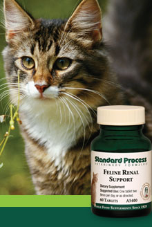 Quality whole food supplements for your pet